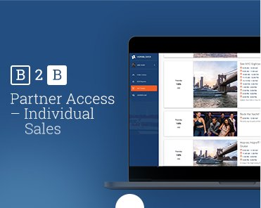 Mastering the B2B Portal, Partner Access – Individual Sales